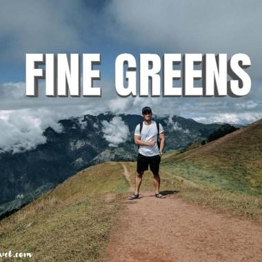 fine green lightroom mobile preset