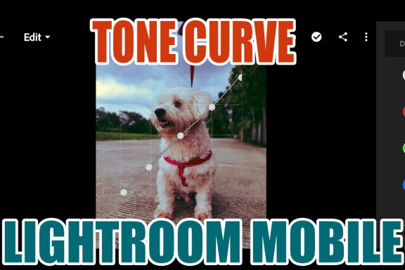tone curve