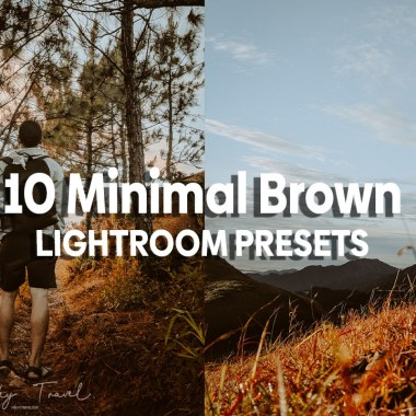 10 minimal brown inspired presets