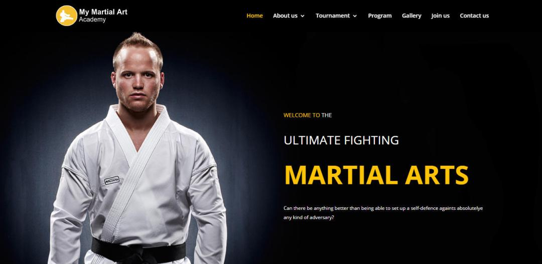 Martial Arts website design layout