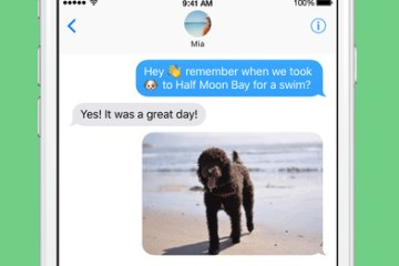 Momento - Share Your Memories as GIFs