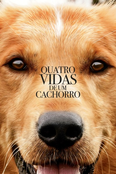 """Pôster do filme """"Quatro Vidas de um Cachorro"""""""
