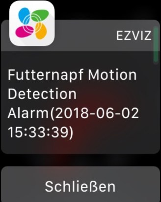 c6t-notification2