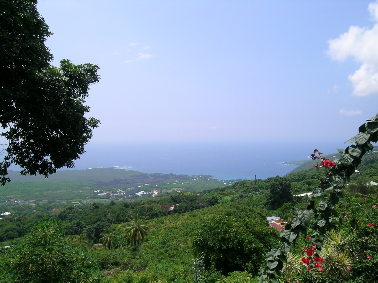 A Distant View of Kealakekua Bay