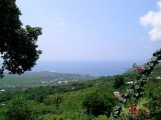 A Distant View of Kealakekua Bay