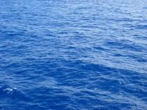 Ocean Water Near Kaua'i