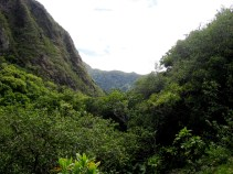 The View to the Back of 'Īao Valley