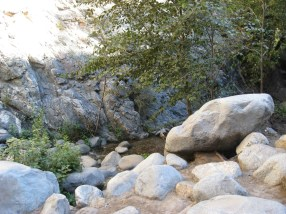 Angeles National Forest, 2010 - 11