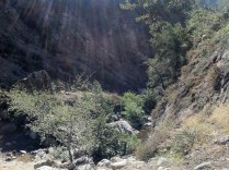 Angeles National Forest, 2010 - 14