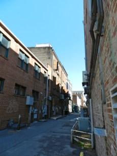 Savannah Alley