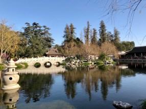 Chinese Garden - 2