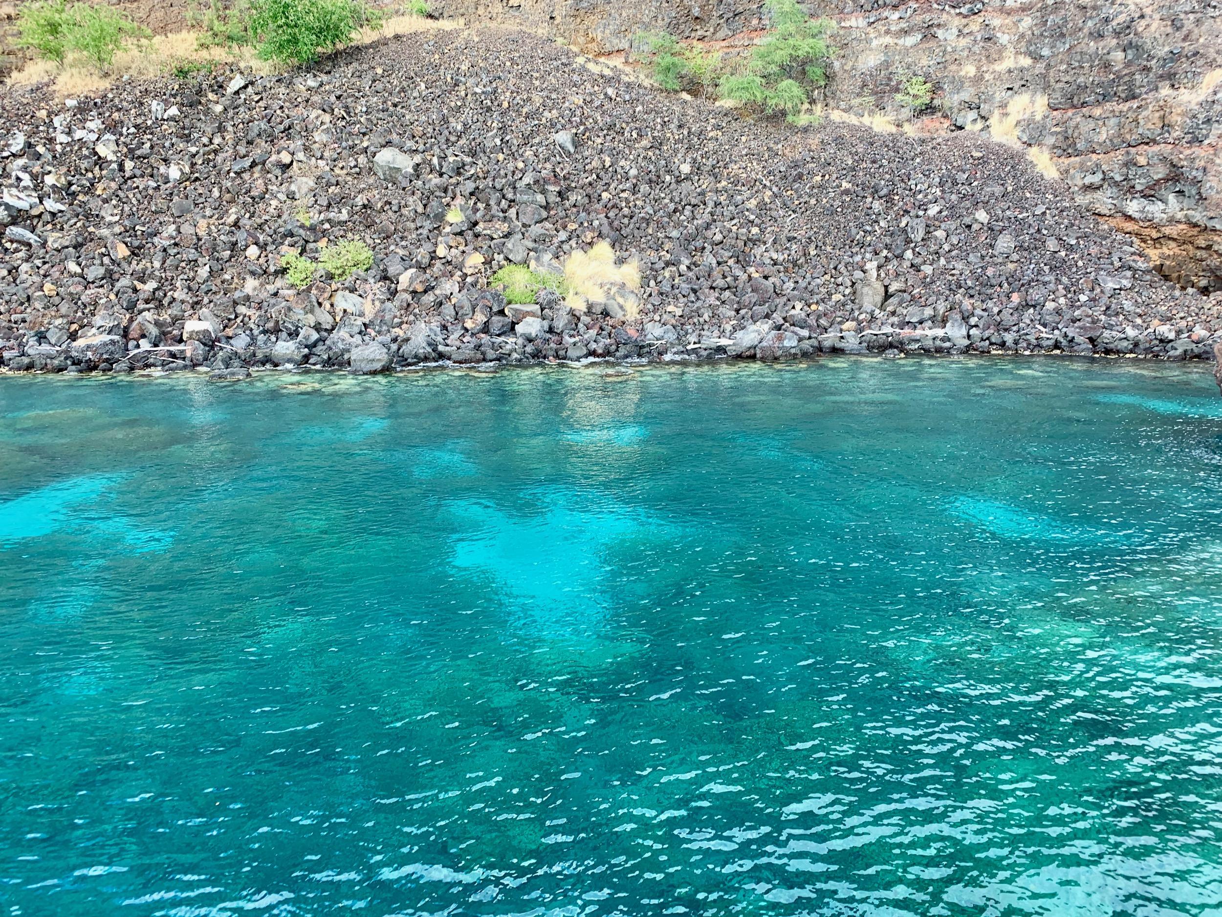 Kealakekua Bay Water
