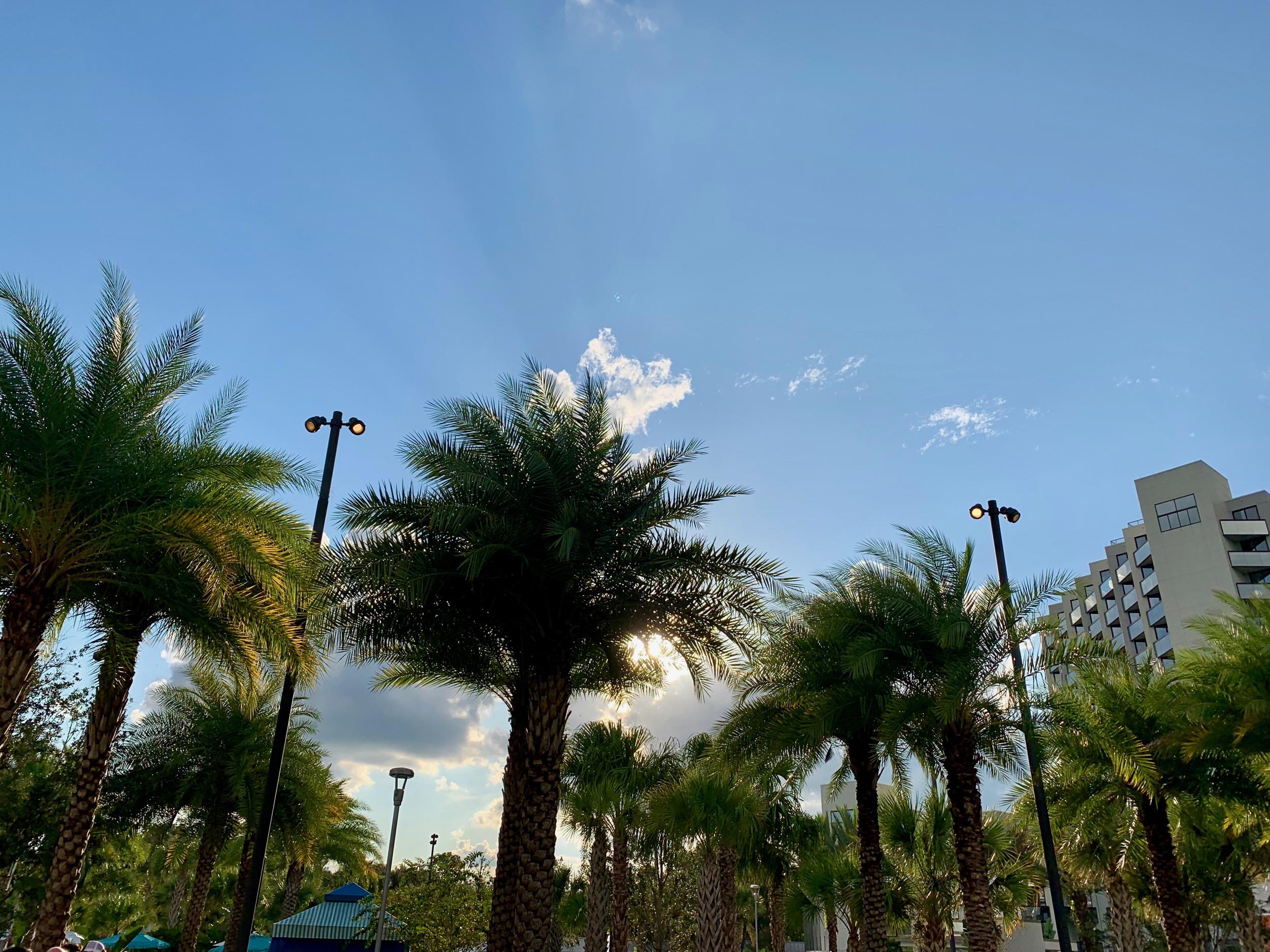 Orlando Sky
