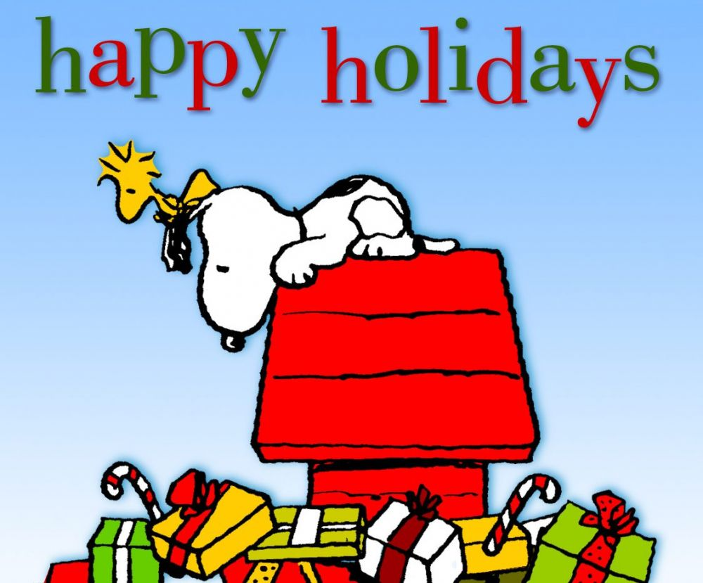 Image result for snoopy holidays