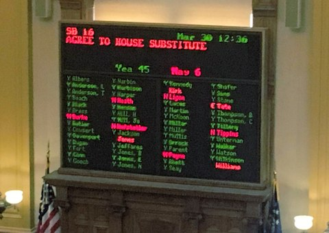 Cannabis Passed Georgia Senate
