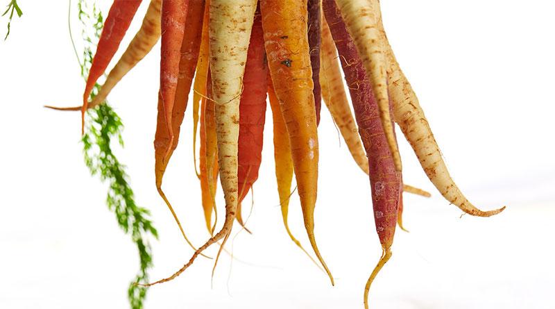 Fruits et légumes : comment éviter de les gaspiller ?