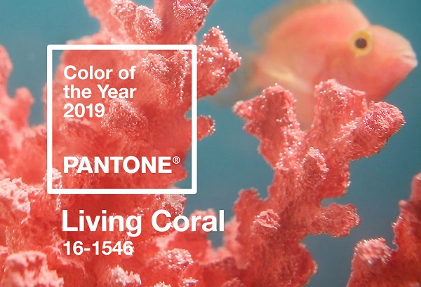 Behind PANTONE's 2019 Color Of The Year 'Living Coral' Lies A Sad Truth