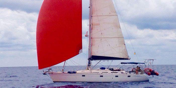 organic sailing