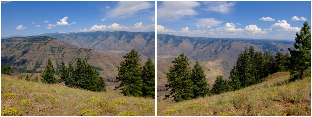 View of Hell's Canyon from the Oregon rim. diptych
