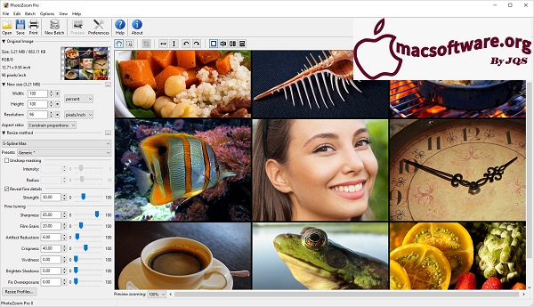 PhotoZoom Pro 8.0.6 Crack With Unlock Code Free Download