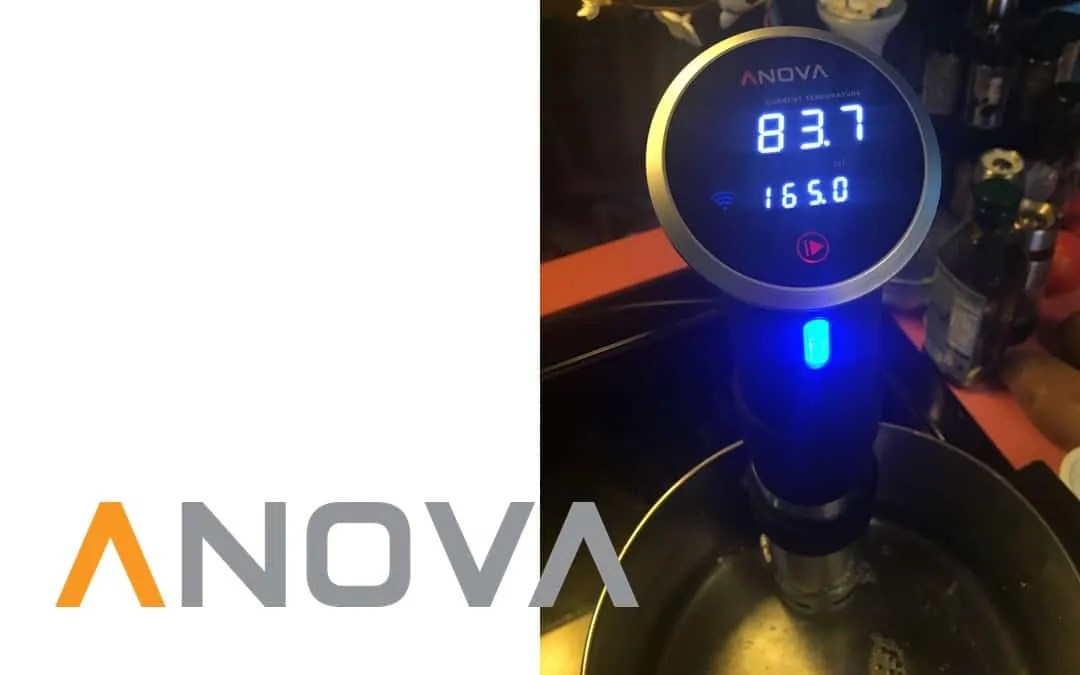 Anova Precision Cooker REVIEW