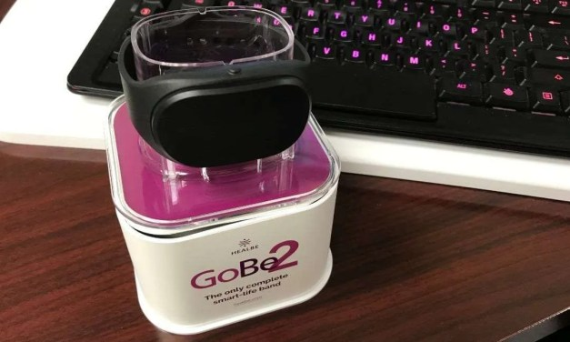 Healbe GoBe 2 Smart Life Band REVIEW