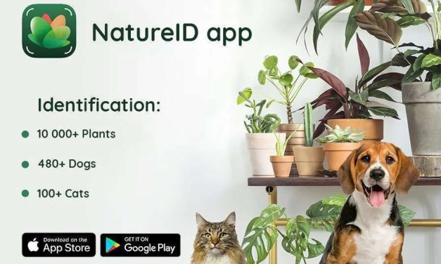 NatureID for iOS Receives Update NEWS