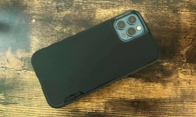 Smartish Gripmunk Slim Case for iPhone 12 REVIEW