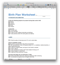 Birth Plan Template (PDF and Pages) - MacTemplates.com
