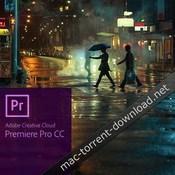 Adobe premiere pro cc 2018 icon