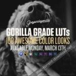 greyscale gorilla gorilla grade luts for final cut pro x