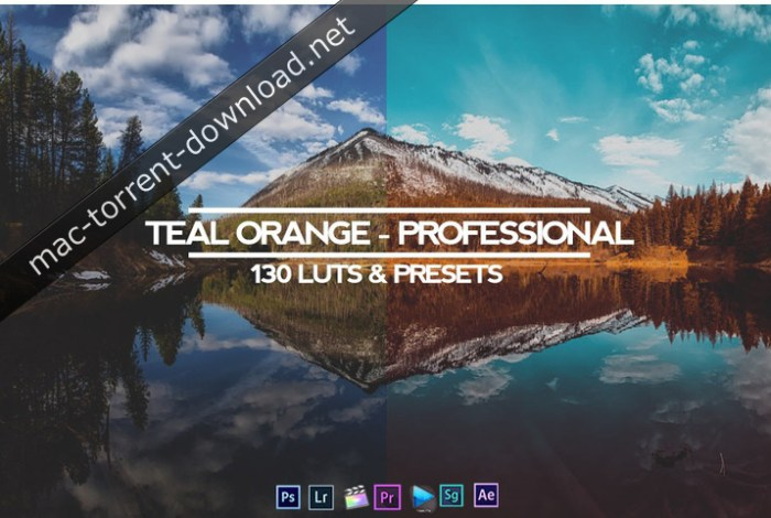 TEAL AND ORANGE - PROFESSIONAL ALL IN ONE (RMN) 130 LUTS & PRESETS