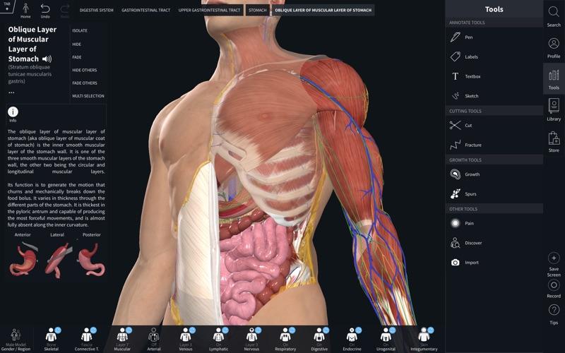 1_Complete_Anatomy_2019.jpg