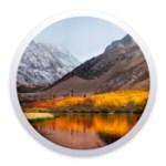 macOS High Sierra 10.13.6 Build 17G2208 (15P6703)