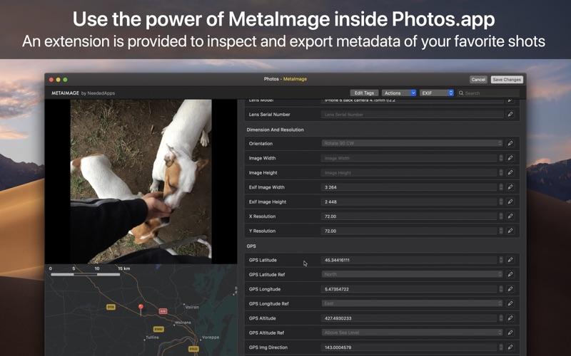 MetaImage Screenshot 04 1j01mzgn
