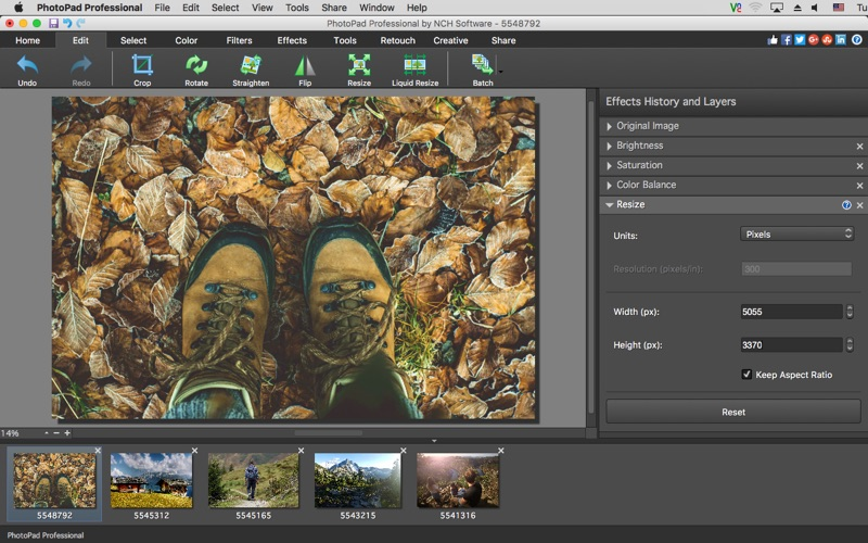 PhotoPad Professional Screenshot 02 obiib8n