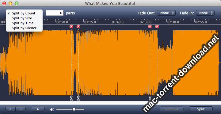 AppleMacSoft MP3 Splitter 501 Screenshot 02 t7fiagy