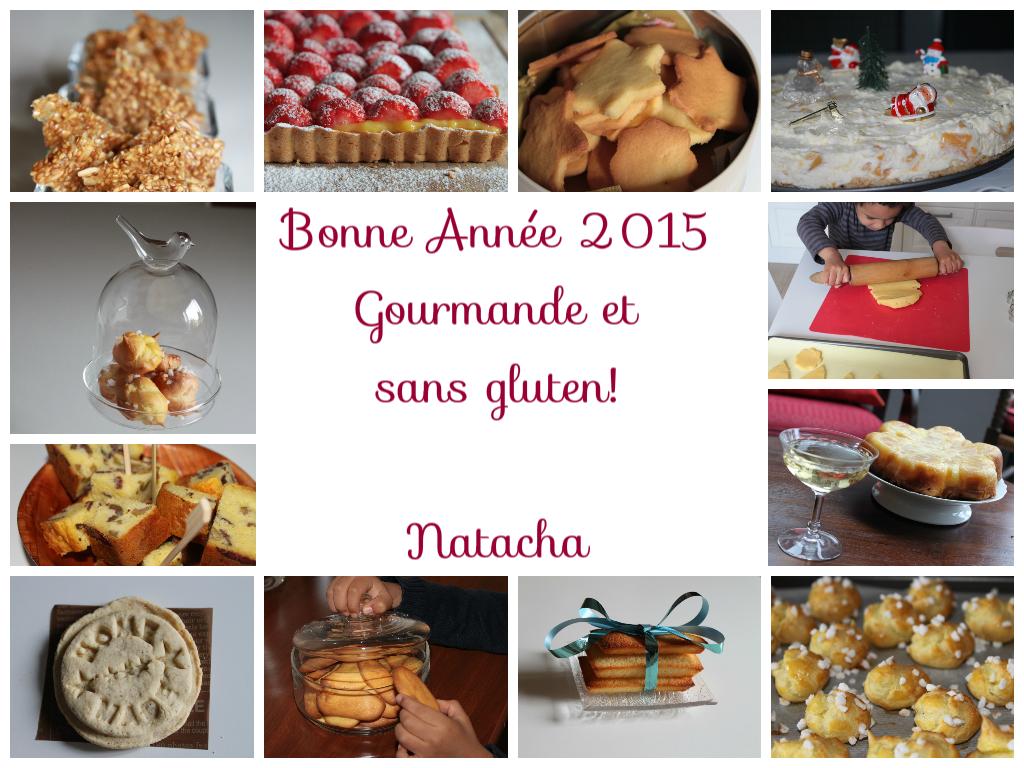 Voeux blog 2015