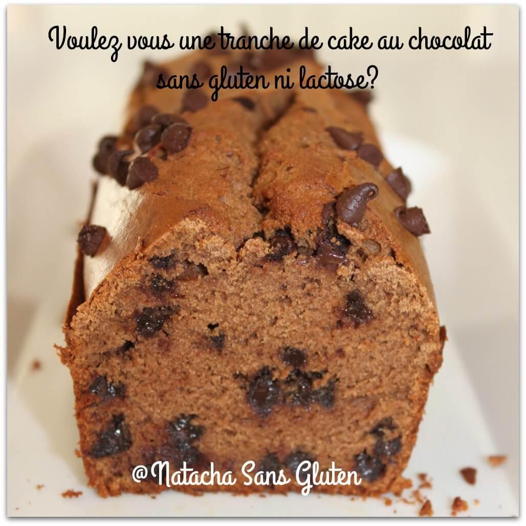 Cake Chataigne Chocolat sans gluten et sans lactose