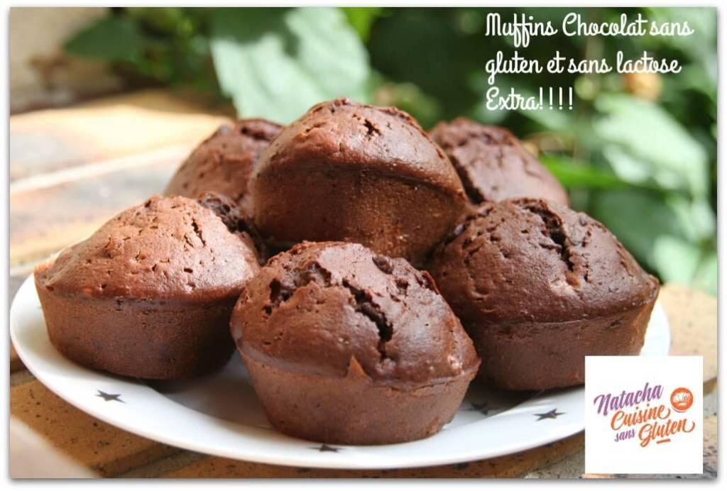 Muffins chocolat sans gluten sans lactose