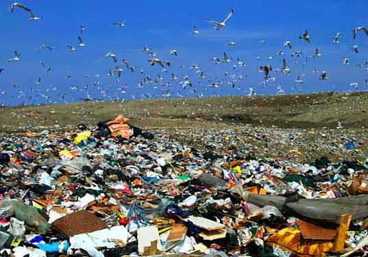 landfillimage01