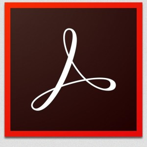 Adobe Acrobat Reader DC v2019.008.20081 Crack