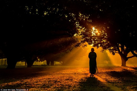23e84d3600000578-2867150-vigorous_touch_of_the_morning_a_hindu_monk_is_walking_in_a_foggy-a-5_1418141805148