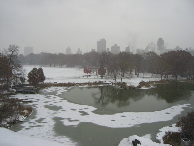 Turtle-Pond-and-Great-Lawn-Central-Park-New-York-City-e1375449559483