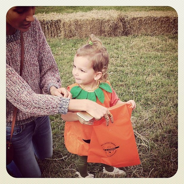 Dixie-all-dressed-up-pretty-pumpkin-Halloween-2014
