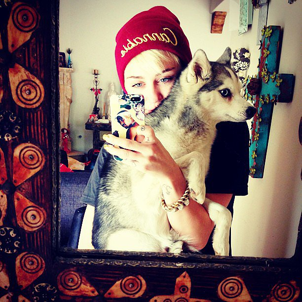 Miley-Cyrus-took-selfie-one-her-many-pups-May-2013
