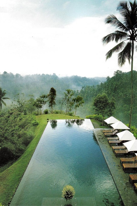 Hotel-Alila-Ubud-Infinity-Pool-bali-conde-nast-traveller-17dec14-pr_540x810
