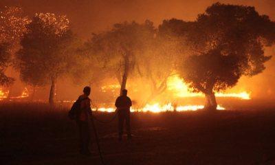 PrayForGreece για τις φονικές πυρκαγιές