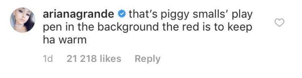 Ariana Grande εξήγησε για ποιο λόγο έχει μια κούνια