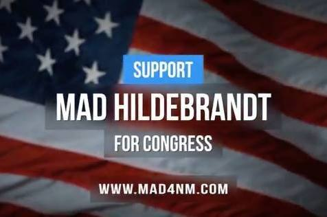 Check out the new Mad Hildebrandt for Congress …